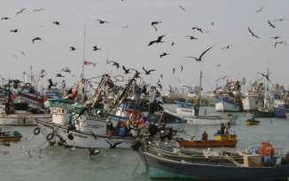 pescaartesanal (1)